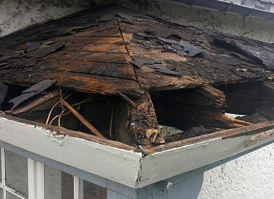Residential Water Damage Claims