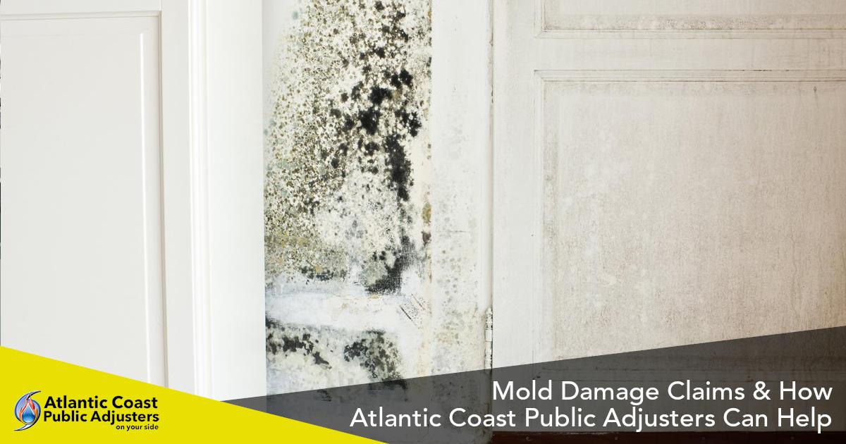 mold damage claims