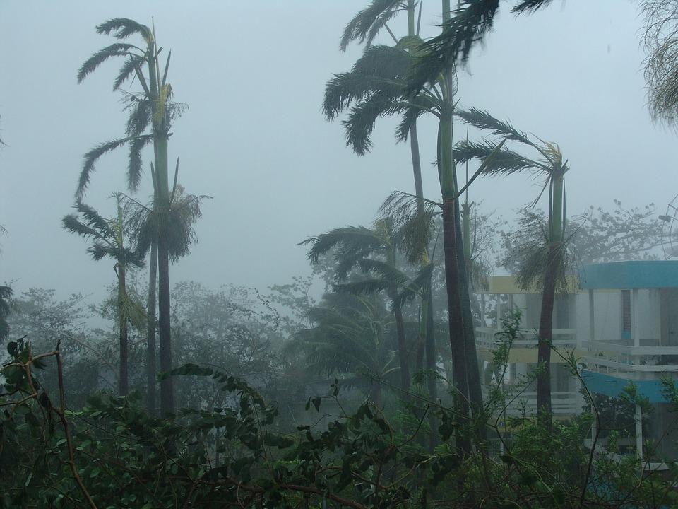 Hurricane & Wind Claim